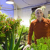 """SNRAS research assistant Grant Matheke works in the greenhouse above the old house at the experiment farm.  <div class=""""ss-paypal-button"""">Filename: AAR-12-3253-2.jpg</div><div class=""""ss-paypal-button-end"""" style=""""""""></div>"""