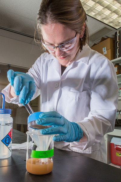 """Assistant professor Sarah Hayes works to complete a procedure in a Reichardt Building chemstry lab.  <div class=""""ss-paypal-button"""">Filename: AAR-12-3598-043.jpg</div><div class=""""ss-paypal-button-end"""" style=""""""""></div>"""