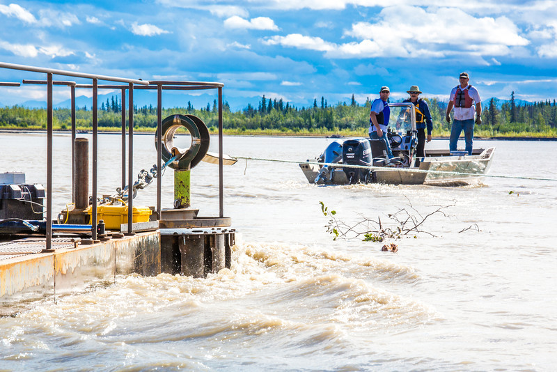 """Researchers with UAF's School of Fisheries and Ocean Sciences and the Alaska Center for Energy and Power (ACEP) watch as debris hits a prototype deployment boom on a barge anchored in the Tanana River near Nenana. They're part of a team conducting research on the feasibility of using the river current to generate electricity for potential use throughout rural Alaska.  <div class=""""ss-paypal-button"""">Filename: AAR-12-3500-133.jpg</div><div class=""""ss-paypal-button-end"""" style=""""""""></div>"""