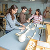 "Undergraduates Heather Bruhn, left, and Michelle Negrete work with teaching assistant Sophie Chowdhury during their summer sessions anatomy and physiology lab in the Murie Building.  <div class=""ss-paypal-button"">Filename: AAR-13-3856-83.jpg</div><div class=""ss-paypal-button-end"" style=""""></div>"