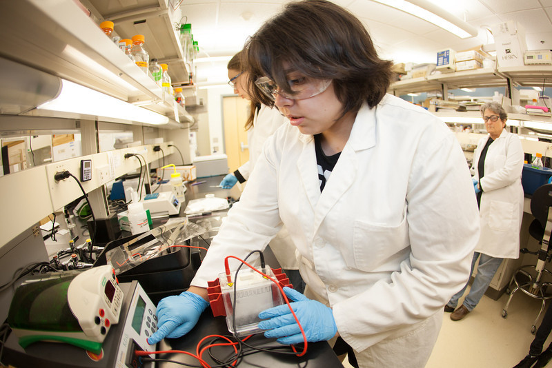 "Isabell Raymundo of Chicago works in the lab at the Arctic Health and Research Building.  <div class=""ss-paypal-button"">Filename: AAR-12-3457-30.jpg</div><div class=""ss-paypal-button-end"" style=""""></div>"