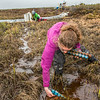 "Ludda Ludwig, a Ph.D. candidate with UAF's College of Natural Science and Mathematics, collects water samples from a research site near the headwaters of the Kuparuk River on Alaska's North Slope.  <div class=""ss-paypal-button"">Filename: AAR-14-4217-059.jpg</div><div class=""ss-paypal-button-end""></div>"