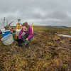 "Ludda Ludwig, a Ph.D. candidate with UAF's College of Natural Science and Mathematics, transfers data from a climate recording station at a research site near the headwaters of the Kuparuk River on Alaska's North Slope. Ludwig's research involves the movement of water and nutrients from Arctic hillslopes to streams.  <div class=""ss-paypal-button"">Filename: AAR-14-4217-081.jpg</div><div class=""ss-paypal-button-end""></div>"