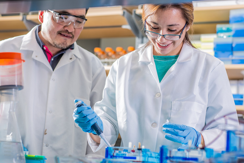"""Associate professor Jack Chen looks on as senior engineering major Shanann Hoyos performs gel electrophoresis to check results from a polymerase chain reaction assay in the Murie Building virology lab.  <div class=""""ss-paypal-button"""">Filename: AAR-13-3989-98.jpg</div><div class=""""ss-paypal-button-end"""" style=""""""""></div>"""