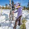 "Daisy Huang, right, a research engineer for the Alaska Center for Energy and Power, works with ACEP intern Luke George to install a meteorological station on a hillside near the Black Rapids Lodge, about 150 miles southeast of Fairbanks. The station will record wind speed and direction, as well as temperatures at different altitudes.  <div class=""ss-paypal-button"">Filename: AAR-13-3843-74.jpg</div><div class=""ss-paypal-button-end"" style=""""></div>"