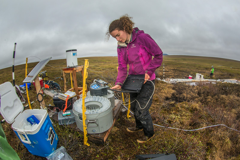"""Ludda Ludwig, a Ph.D. candidate with UAF's College of Natural Science and Mathematics, transfers data from a climate recording station at a research site near the headwaters of the Kuparuk River on Alaska's North Slope. Ludwig's research involves the movement of water and nutrients from Arctic hillslopes to streams.  <div class=""""ss-paypal-button"""">Filename: AAR-14-4217-079.jpg</div><div class=""""ss-paypal-button-end""""></div>"""