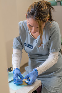 CTC dental assisting student Jessie Ginnis sets up a temporary dental bridge at the program's facility on Barnette Street in downtown Fairbanks.  Filename: AAR-16-4873-056.jpg