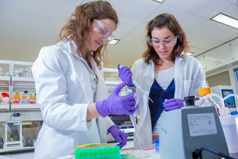 "Undergraduate Alyssa Komac, left, and graduate student Theresia Schnurr use pipettes in their research involving the metabolism in Alaska sled dogs.  <div class=""ss-paypal-button"">Filename: AAR-12-3673-56.jpg</div><div class=""ss-paypal-button-end"" style=""""></div>"