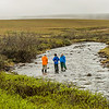 "Scientists take samples from the stream feeding Toolik Lake at the Toolik Field Station, run by UAF's Institute of Arctic Biology on Alaska's North Slope.  <div class=""ss-paypal-button"">Filename: AAR-14-4216-231.jpg</div><div class=""ss-paypal-button-end""></div>"