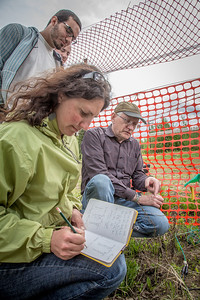 Amanda Byrd, a research technician with the Alaska Center for Energy and Power, works with Steven Sparrow, dean of UAF's College of Natural Resources and Agricultural Sciences, to collect data on a plot of willows being grown on the experiment farm to study their potential use as a source of biofuel. A group of ACEP interns look on.  Filename: AAR-13-3853-10.jpg