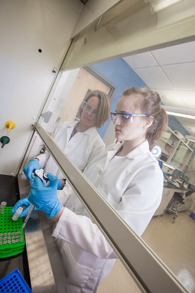 "Julia Covell, right, works with Associate Professor Kristin O'Brien's studying tissue samples of fish from Antarctica in a lab in the Arctic Health Research Building.  <div class=""ss-paypal-button"">Filename: AAR-12-3365-141.jpg</div><div class=""ss-paypal-button-end"" style=""""></div>"