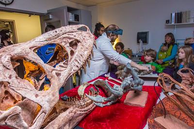 Staff members display dinosaur bones to visitors during the University of Alaska Museum of the North's annual Halloween open house.  Filename: AAR-14-4369-10.jpg