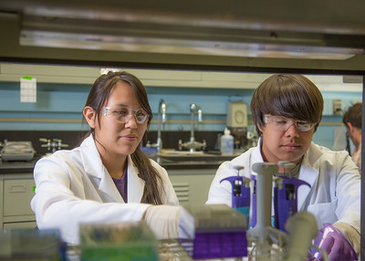 Jacinta Matthias from Kotlik and Kyran Ruerup from Fairbanks took part in the six-week RAHI Research summer residence program, learning molecular biology and genetics while working in a research lab on the Fairbanks campus.  Filename: AAR-12-3459-064.jpg