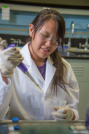 Jacinta Matthias from Kotlik took part in the six-week RAHI Research summer residence program, learning molecular biology and genetics while working in a research lab on the Fairbanks campus.  Filename: AAR-12-3459-070.jpg