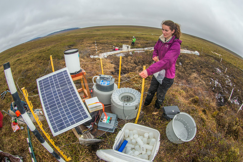 """Ludda Ludwig, a Ph.D. candidate with UAF's College of Natural Science and Mathematics, collects water samples from a research site near the headwaters of the Kuparuk River on Alaska's North Slope.  <div class=""""ss-paypal-button"""">Filename: AAR-14-4217-077.jpg</div><div class=""""ss-paypal-button-end""""></div>"""