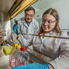 "Associate professor Jack Chen looks on as Ph.D. candidate Jayme Parker performs a virological assay in the safety cabinet inside the virology lab in the Murie Building.  <div class=""ss-paypal-button"">Filename: AAR-13-3989-45.jpg</div><div class=""ss-paypal-button-end"" style=""""></div>"