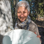 Jan Dawe, an instructor with OneTree Alaska, collects birch sap from a tree behind the chancellor's residence on the UAF campus. OneTree Alaska is an education and outreach program of the Un ...