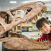 "Youngsters learn all about dinosaurs in Summer Sessions' DinoCamp at the Murrie Building.  <div class=""ss-paypal-button"">Filename: AAR-14-4242-43.jpg</div><div class=""ss-paypal-button-end""></div>"
