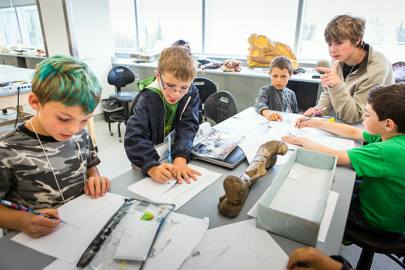 """Youngsters learn all about dinosaurs in Summer Sessions' DinoCamp at the Murrie Building.  <div class=""""ss-paypal-button"""">Filename: AAR-14-4242-2.jpg</div><div class=""""ss-paypal-button-end""""></div>"""