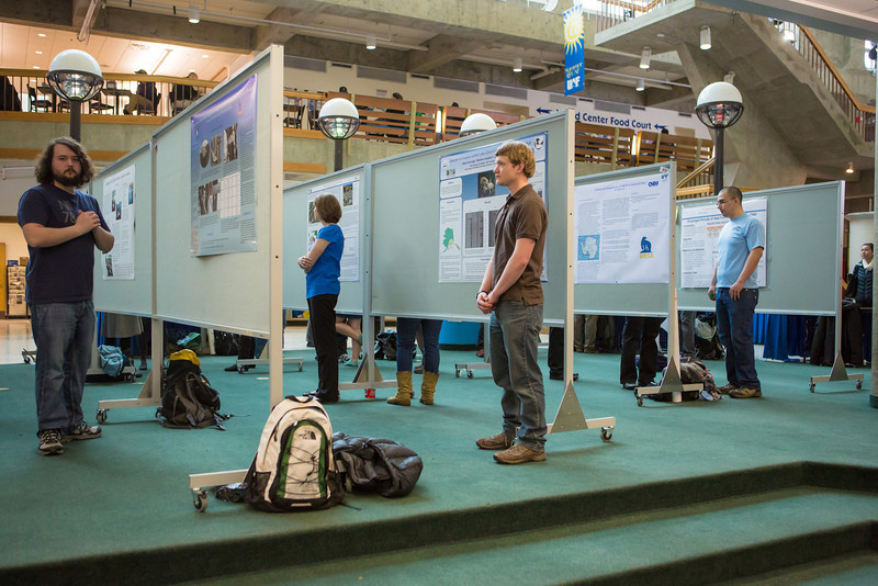 "UAF students participate in the 6th annual Research Day poster presentations April 30, 2013 at the Wood Center.  <div class=""ss-paypal-button"">Filename: AAR-13-3809-2.jpg</div><div class=""ss-paypal-button-end"" style=""""></div>"