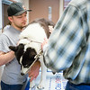 "Veterinary Medicine student, Christopher, Clement, interns with Dr. David Hunt during Summer of 2014 at the Sitka Animal Hospital in Sitka, Alaska.  <div class=""ss-paypal-button"">Filename: AAR-14-4206-15.jpg</div><div class=""ss-paypal-button-end""></div>"