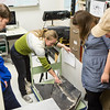 "Collection Specialist Julie Rousseau presents a replica of a fossilized ichthyosaur during to a group of students during a tour of the Museum of the North's lower level during the Life in the Age of Dinosaurs lab.  <div class=""ss-paypal-button"">Filename: AAR-14-4066-42.jpg</div><div class=""ss-paypal-button-end""></div>"