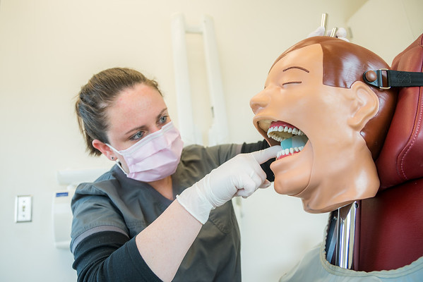 """CTC dental assistant student Abigail Bazon practices digital radiography at the program's facility on Barnette Street in downtown Fairbanks.  <div class=""""ss-paypal-button"""">Filename: AAR-16-4873-097.jpg</div><div class=""""ss-paypal-button-end""""></div>"""