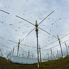 "A look at part of the antenae array at the High Frequency Active Auroral Research Program (HAARP) facility in Gakona. The facility was built and operated by the U.S. military before its official transfer to UAF's Geophysical Institute in August 2015.  <div class=""ss-paypal-button"">Filename: AAR-15-4600-020.jpg</div><div class=""ss-paypal-button-end""></div>"