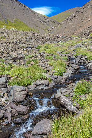 Research assistant professor Jeff Benowitz, left, and Paul Layer, dean of UAF's College of Natural Sciences and Mathematics, make their way up the Tattler Creek drainage in Denali National Park. The area has drawn intense interest in recent years after several discoveries of dinosaur remains nearby.  Filename: AAR-13-3899-102.jpg