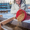 "Civil engineering major Katrina Monta pours sawdust to mix with water that when frozen, hardens into a substance many times stronger than concrete. Katrina and others are hard at work on this year's ice arch, scheduled for completion Feb. 20.  <div class=""ss-paypal-button"">Filename: AAR-13-3718-19.jpg</div><div class=""ss-paypal-button-end"" style=""""></div>"