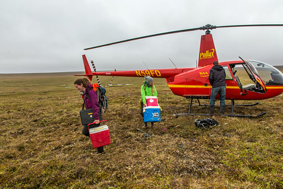 Ph.D candidate Ludda Ludwig, left, and graduate student Kelsey Blake from the University of Victoria in British Columbia, unload a helicopter after a short flight from the Toolik Field Station to their research site near the headwaters of the Kuparuk River. Ludwig's study is focused on the movement of water and nutrients from Arctic hillslopes to streams. The Toolik research facility, located about 370 miles north of Fairbanks on Alaska's North Slope, is operated by UAF's Institute of Arctic Biology.  Filename: AAR-14-4217-030.jpg