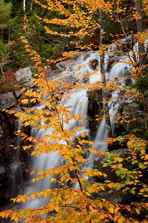 Waterfalls, Acadia National Park