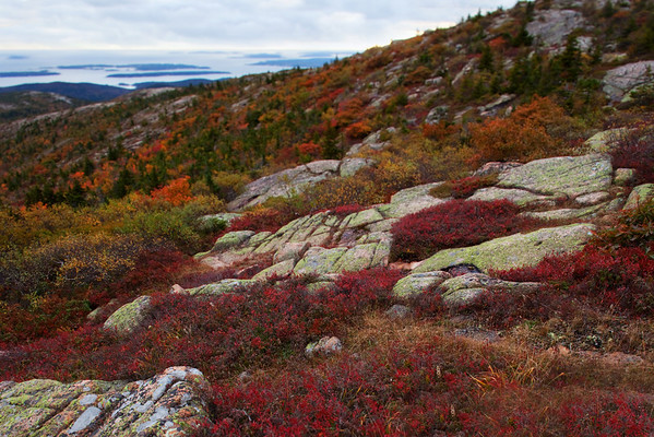 Cadillac Mountain, Acadia National Park