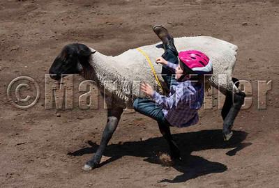 Mutton Rider