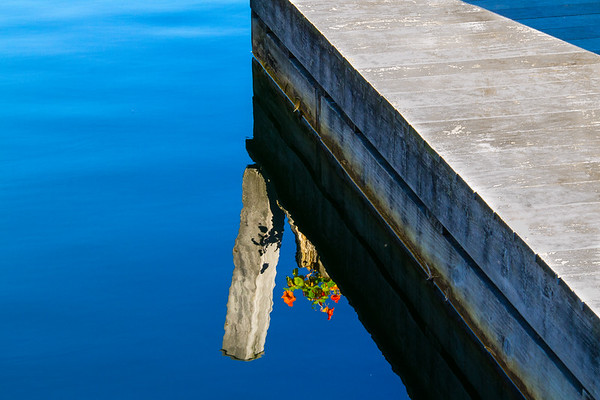 Dock Reflections