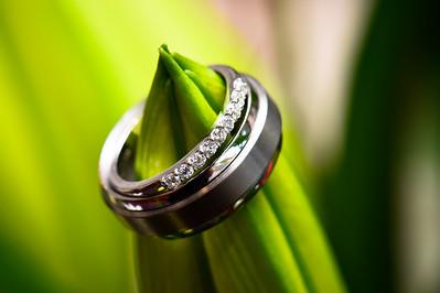 11 October 2014 Townsville, Queensland - The Wedding of Amanda Tapiolas and Daniel Bigney - Photo: Cameron Laird (Ph: 0418 238811)
