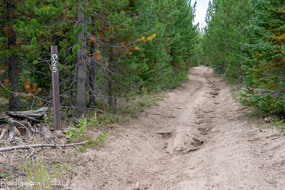First few miles of the trail is on an ATV road.