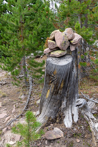 Rock cairn on tree stump- common in the first 25 miles of the trail.