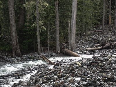 The lower crossing of the Carbon River- in need of a little TLC from the trail crew.
