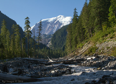 The Mountain from the Carbon River.
