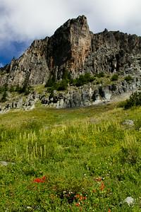 Yellowstone Cliffs.