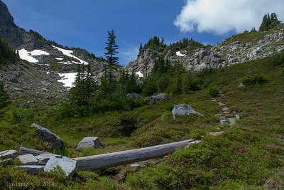 Northern Loop Trail just East of Windy Gap.