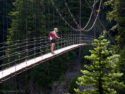 Tahoma Creek suspension bridge.