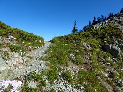 Trail over Knapsack Pass.