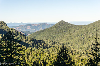 A view of the clear-cut slopes west of Mount Rainier National Park.