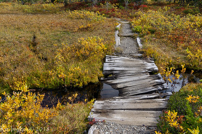 """Part of the """"maintained"""" trail to Mirror Lakes"""