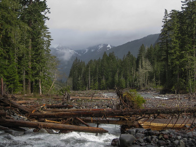 The Carbon River channel,