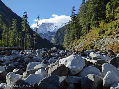 The Mountain from the Carbon riverbed.