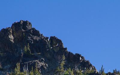 Goat standing sentry below Three  Way Peak