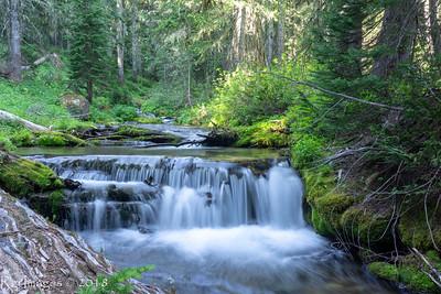 Lodi Creek